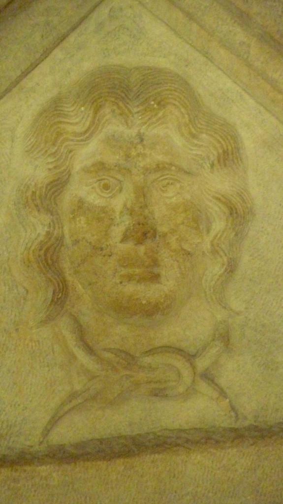 fig 5 sianie